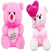 Gift Basket Stuffed Soft Toy Combo Of Balloon Teddy With Pink Someone Special Teddy - Abelestore