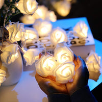 Warm White Color 20 Roses Flower Shape String Light for Decoration Romance Anniversary decorationPurpose