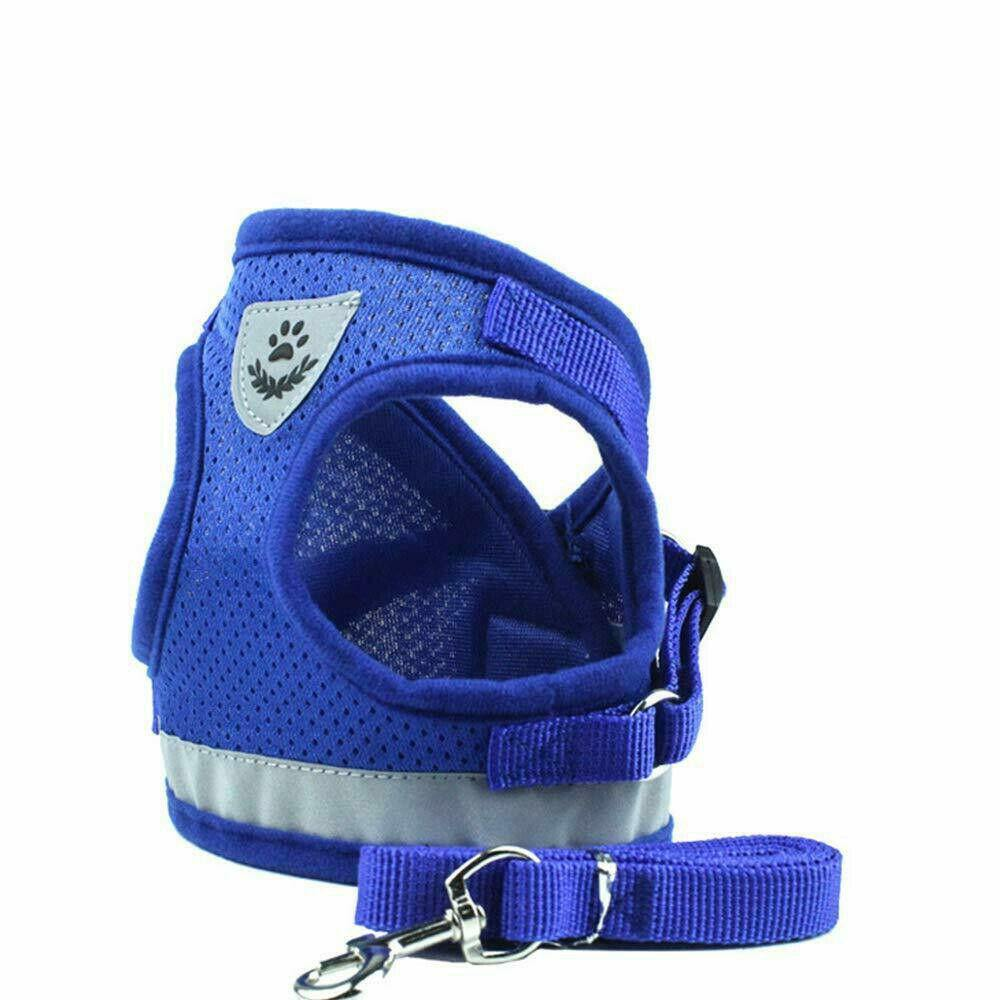 Breathable Summer Mesh Dog Harness with Lead - Dog Chews