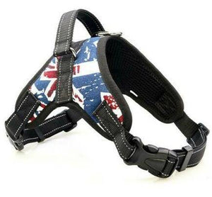 Heavy Duty Dog Harness - Dog Chews