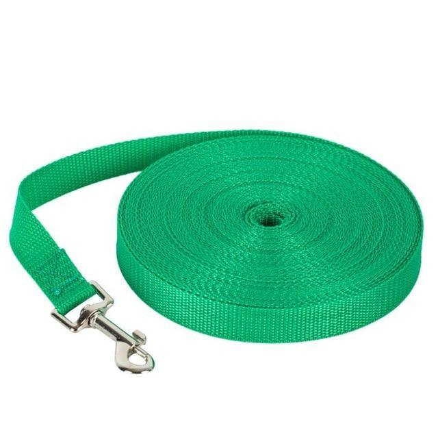 Nylon Dog Training Lead - Dog Chews