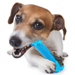 Teeth Cleaning Dog Bone (2 Pack) - Dog Chews