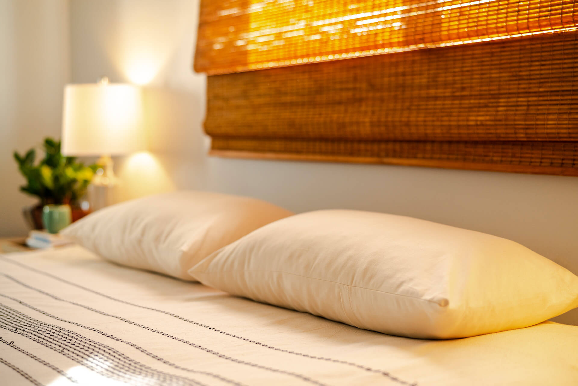 Organic Pillows made with GOLS certified organic shredded Dunlop latex