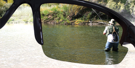 polarized lenses canada