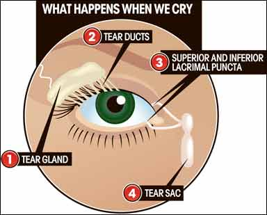 c23a8989ba4 Tips For Dry Eyes From Contacts