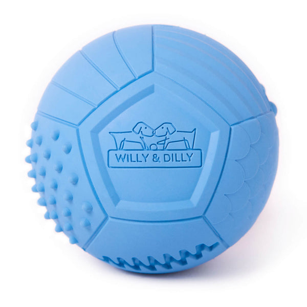 Large Ball Dog Toy - Blue