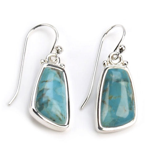 Abstract Turquoise Earring