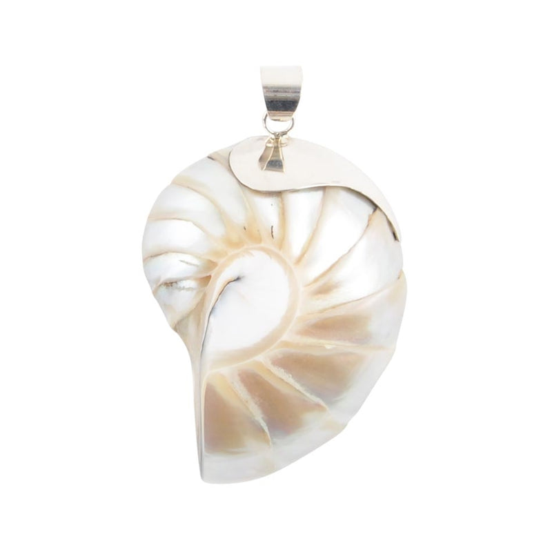 She Sells Seashells Pendant