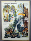 vintage poster retro wall chart dangerous forest animals