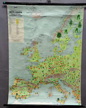 vintage poster rollable wall chart map Western Europe vegetation growth