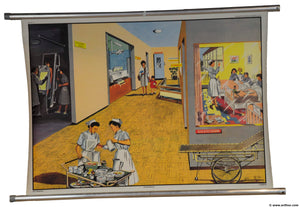 vintage wall chart rollable poster print paediatric kids hospital nurse clinic