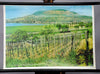 vintage wall chart picture wine growing landscape Lake Balaton Hungary
