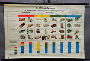 Human nutrition health poster vintage pull-down wall chart picture