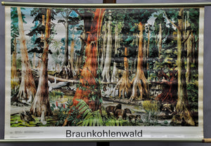 school wall chart, geography, landscape, animals, industry, brown coal forest