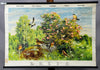 vintage pull-down wall chart picture ornithology passerines swallow thrush