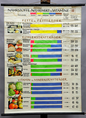 vintage rollable poster wall chart nutrition nutrients sustenance vitamins
