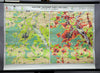 vintage map Stuttgart Germany rollable wall chart city development