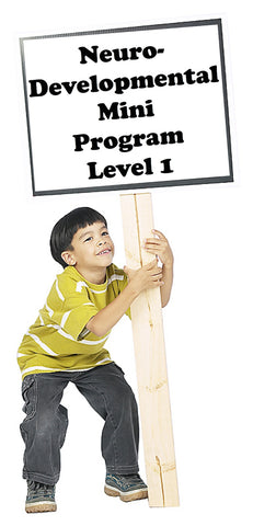 Early Foundations ND Mini-Program Level 1 Part 3