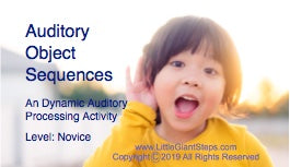 Auditory Object Sequence Cards - Novice or Pro
