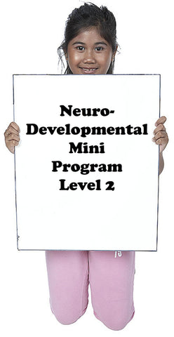 Early Foundations ND Mini-Programs Level 2 Part 1