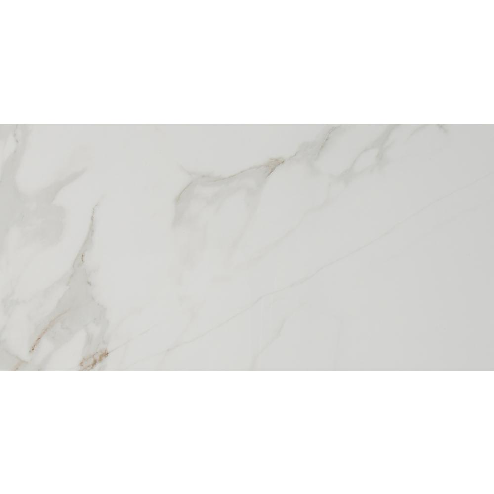Carrara 12 in. x 24 in. Polished Porcelain Floor and Wall Tile (16 sq. ft. / case) - Denali Building Supply