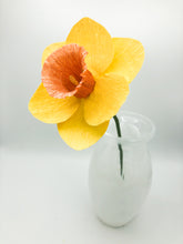 Load image into Gallery viewer, Daffodils