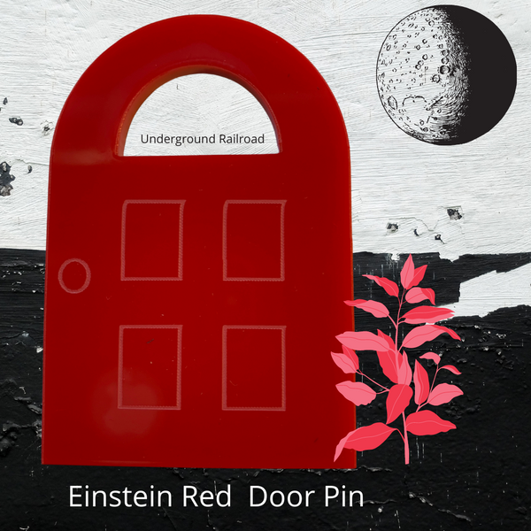 Red Door Pin