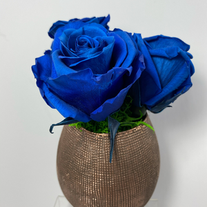 3 extra large preserved roses beautifully nestled on green preserved moss on a Antique Rose ceramic vase.