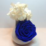 Single XXL Royal Blue Endless Rose encased in a white ceramic terrarium with White Preserved hydrangeas branches on top of the xxl rose.