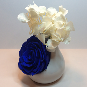 Single XXL Royal Blue Endless Rose encased in a white ceramic terrarium with White Preserved hydrangeas branches on top of the xxl rose. Side Profile