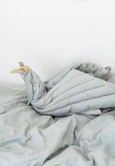 Dreamy Bird Blanket
