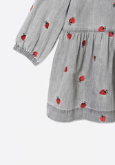 Ladybug Embroidery Dress