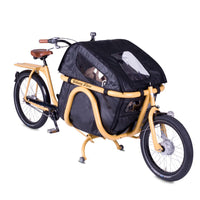Johnny Loco Coupe Camelback 20/24 Cargo Bicycle