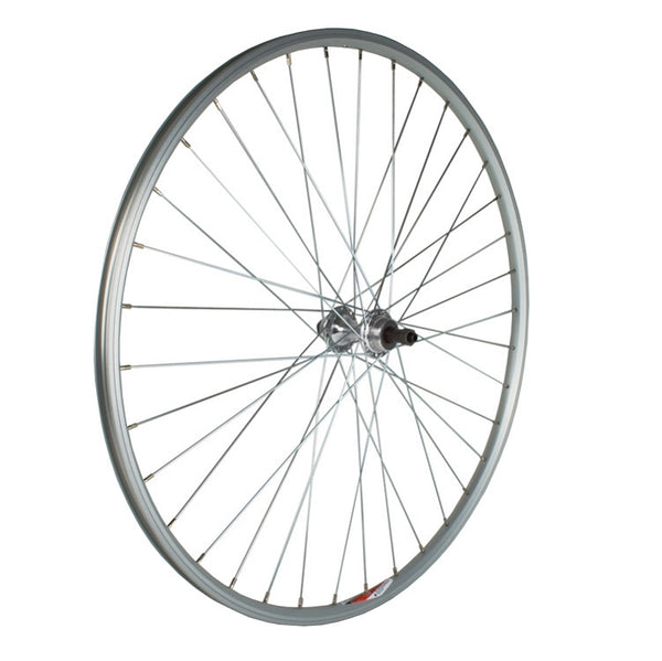 Sta-Tru 700X20-25 REAR UCP SPOKE 6-8SP ALLOY SILVER ALEX RP15 36H RIM AND KT ALLOY QR HUB