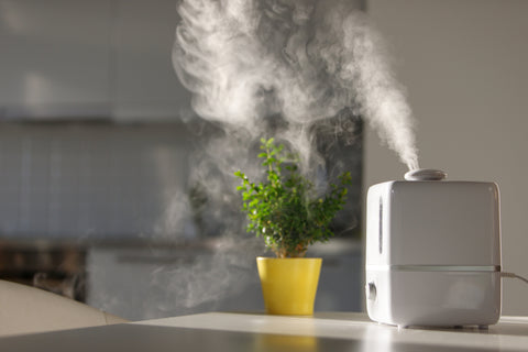humidifier in the home