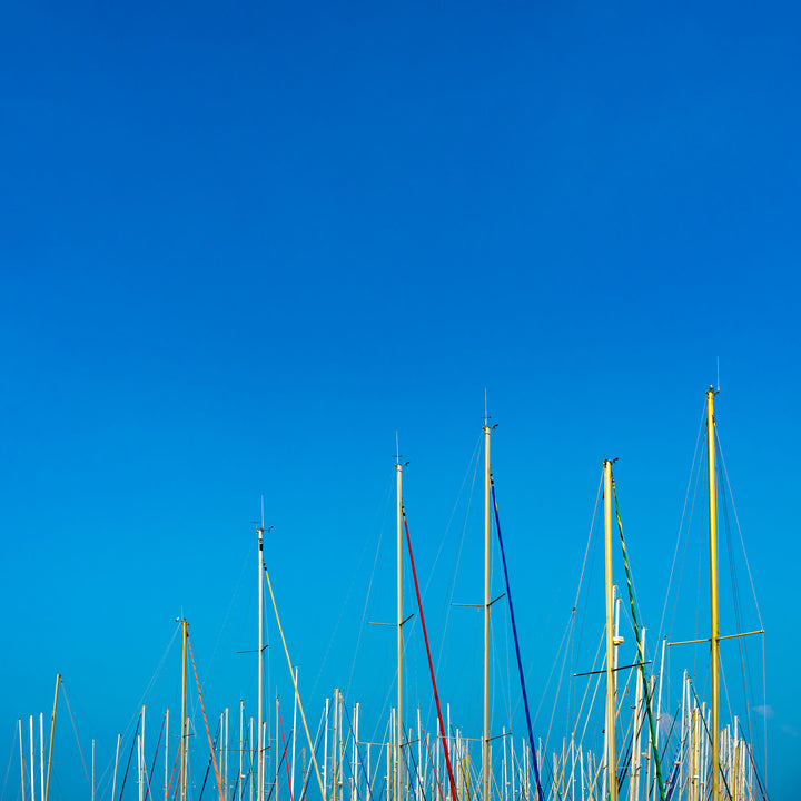 Ocean Wood  - Fotokunst - Fine Art Photography - Alexander-Palm.Photography