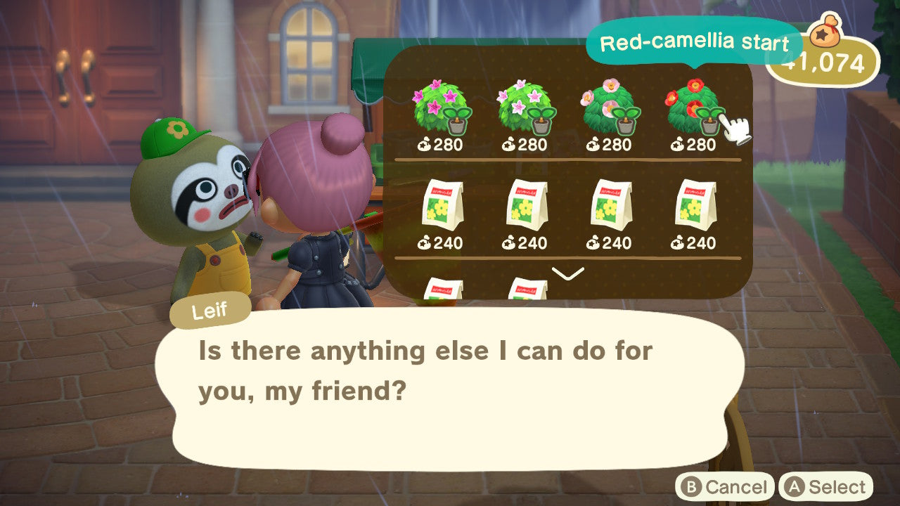 Buying Camellia Shrubs from Leif on Animal Crossing: New Horizons