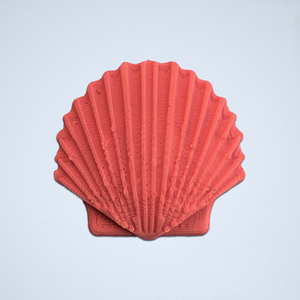 A coral Seashell 3D sticker by Styklet.