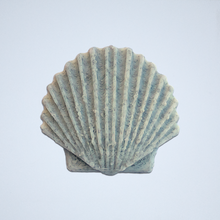 Load image into Gallery viewer, A gray Seashell 3D sticker by Styklet.