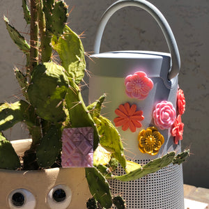 A Bose speaker decorated with flower 3D stickers from Styklet, with a cactus in the foreground.
