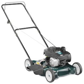 Bolens 125-cc 20-in Push Gas Push Lawn Mower with Briggs & Stratton Engine