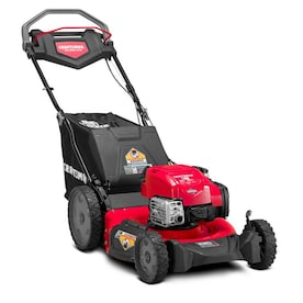 CRAFTSMAN M310 163-cc 21-in Self-Propelled Gas Push Lawn Mower with Briggs & Stratton Engine