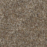 Home Decorators Collection Stryker Court - Color Greystone Texture 12 ft. Carpet(1080 sq. ft./Roll)