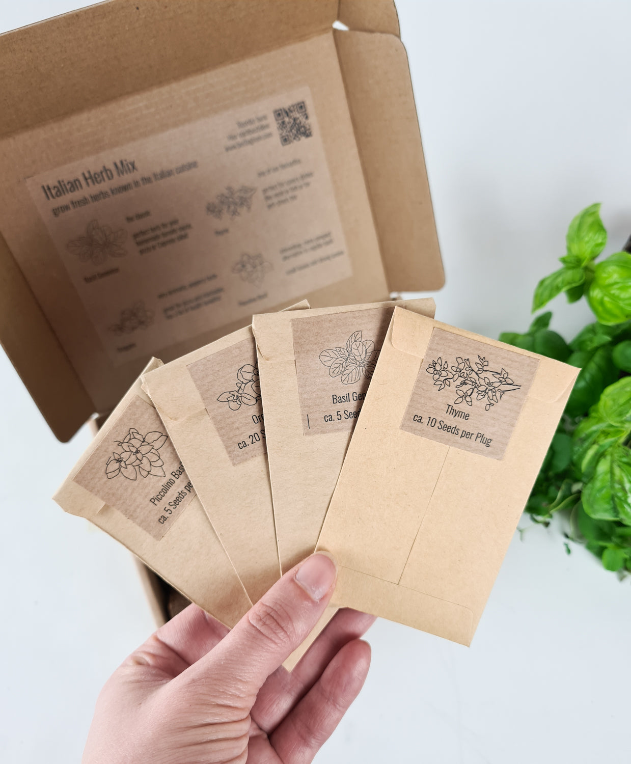 PlantPlugs | Italian Herb Mix 8-Pack