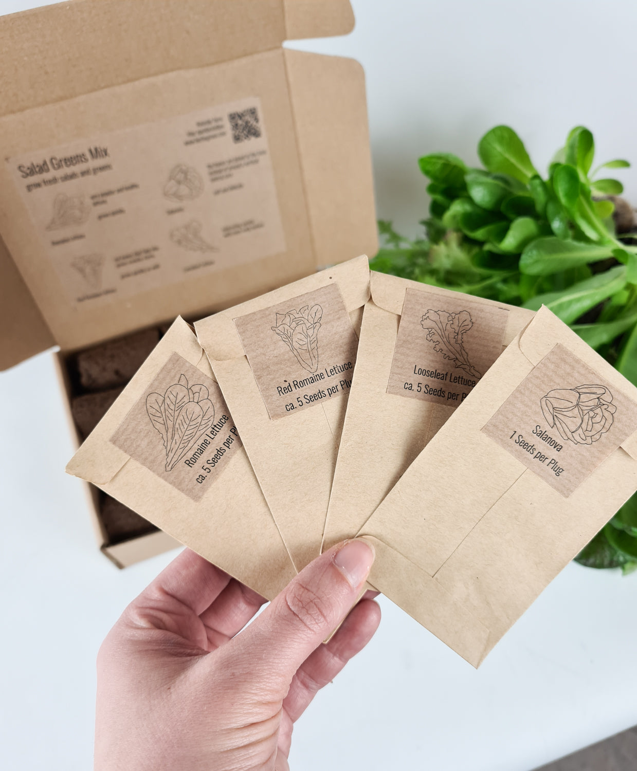 PlantPlugs | Salad Greens Mix 8-Pack