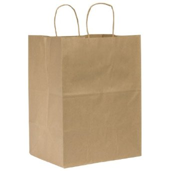 "12"" Kraft Paper Bag with Handles - 250 units"