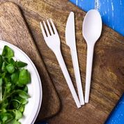 Individual Cutlery Fork (6.5