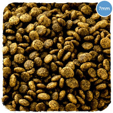 Load image into Gallery viewer, DRY PUPPY FOOD. NATURAL & HEALTHY- FREE RANGE TURKEY WITH PUMPKIN & SPINACH - DRY Puppy FOOD