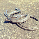 2 Horseshoe Sea Turtles - BlackflagSteel