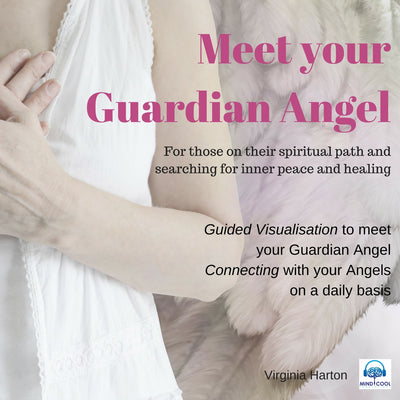 Meet Your Guardian Angel front cover